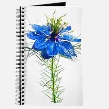 Blue Wildflower iPhone 3G Hard Case Journal