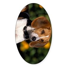 foxhound ipad Decal