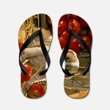 bd apples ipad Flip Flops
