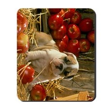bd apples ipad Mousepad