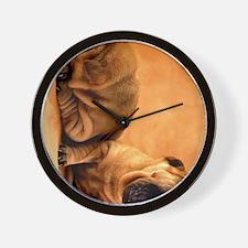 shar pei ipad Wall Clock