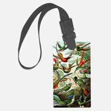 Hummingbirds (Trochilidae) by Er Luggage Tag
