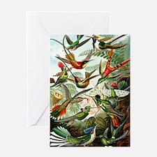 Hummingbirds (Trochilidae) by Ernst  Greeting Card