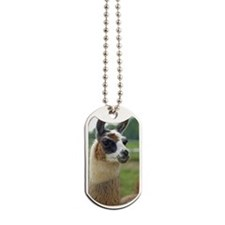 llama2_iphone3G Dog Tags