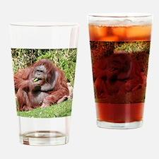 OrangUtan006 Drinking Glass