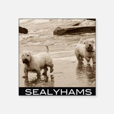 "sealyhams Square Sticker 3"" x 3"""