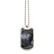 sea-lion-vertical Dog Tags
