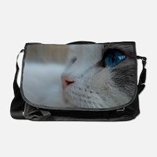 DSC_0074_3 Messenger Bag