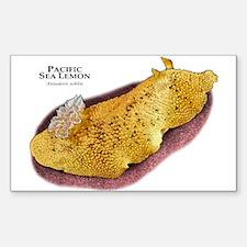 Pacific Sea Lemon Decal