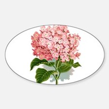 Pink hydragea flowers Decal