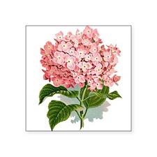 Pink hydragea flowers Sticker