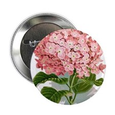 "Pink hydragea flowers 2.25"" Button (10 pack)"