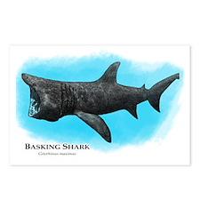 Basking Shark Postcards (Package of 8)
