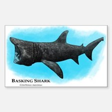 Basking Shark Decal