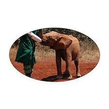 Baby Elephant2 Oval Car Magnet