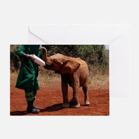 Baby Elephant2 Greeting Card