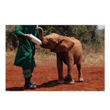 Baby Elephant2 Postcards (Package of 8)