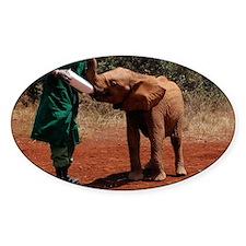 Baby Elephant2 Decal