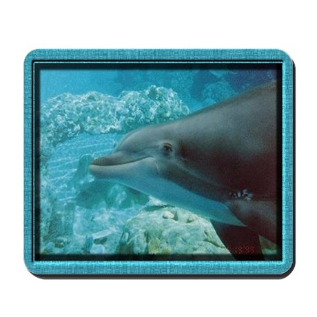 mousepaddolphin