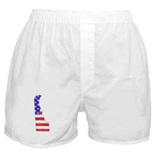 Delaware Flag Boxer Shorts