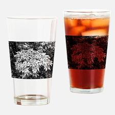 GBF Honeysuckle Drinking Glass