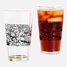 BGFS Bittersweet Drinking Glass