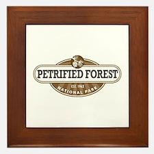 Petrified Forest National Park Framed Tile
