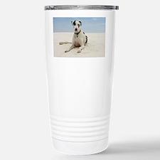 GD beach framed print Stainless Steel Travel Mug