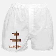 Allegiant: Tris & Tobias Boxer Shorts