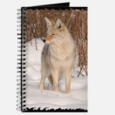 x14blk  Coyote 048 Journal