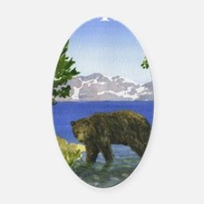 Funny Lake tahoe Oval Car Magnet