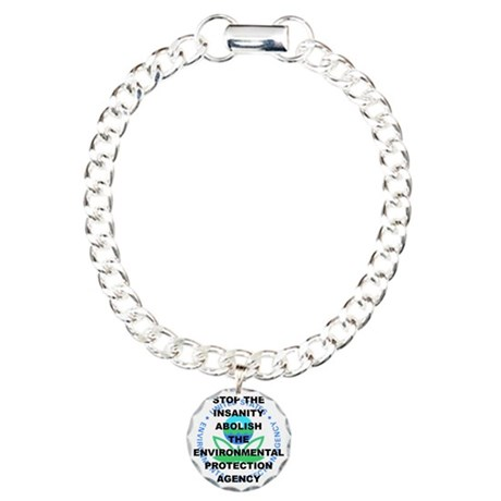 STOP THE INSANITY ABOLIS Charm Bracelet, One Charm