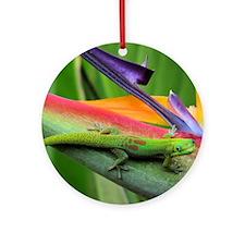 Hawaiian Gecko Round Ornament
