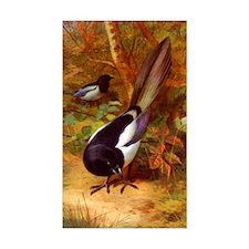 Magpies, Magpie Birds naturali Decal
