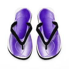 Violet Pointe Shoes Flip Flops