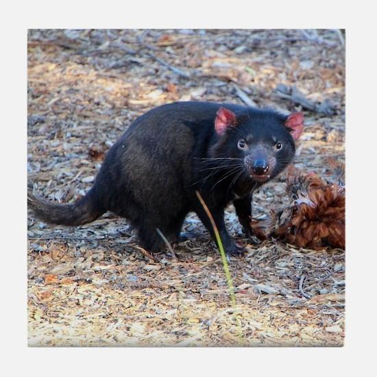 Hungry Tasmanian Devil Tile Coaster