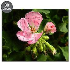 Geranium new flower Puzzle