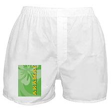 Akamai-iPhone4S Boxer Shorts