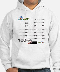 Count by 5 Race to 100 Hoodie
