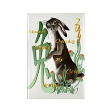 The Year Of The Rabbit Trans Rectangle Magnet