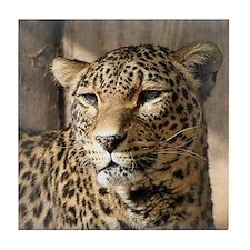 Leopard001 Tile Coaster