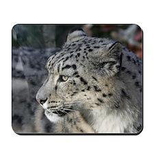 Leopard002 Mousepad