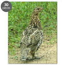 RG2.34x3.2 Puzzle