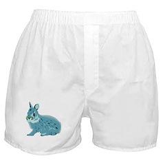 Hand Sketched Rabbit Boxer Shorts