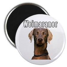 THE Weimaraner Magnet