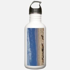 441_GREAT SAND DUNES Water Bottle