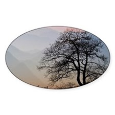 TreeSunsetRidges_LargePoster Decal