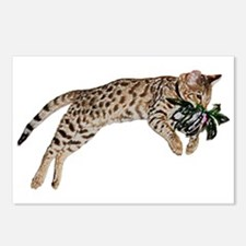 Cat Leap - Postcards (Package Of 8)