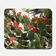 colorful cactus flowers Mousepad