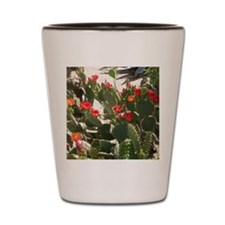 colorful cactus flowers Shot Glass